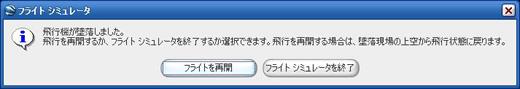 Flight Simulator_03.jpg